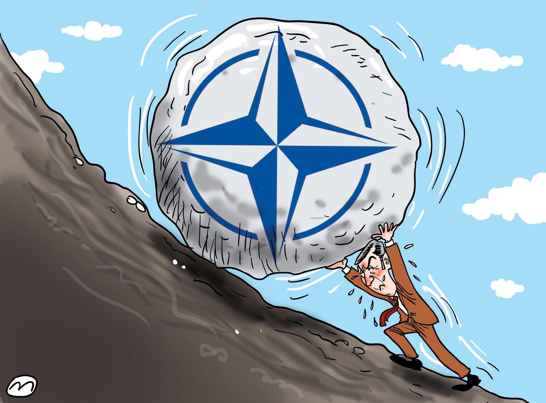 НАТО избори 2014. године